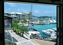 Caribbean Scenery and Fun!-scrub5.jpg