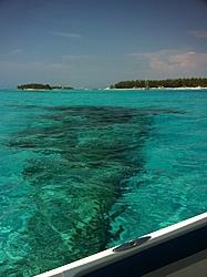 Caribbean Scenery and Fun!-img_2716.jpg