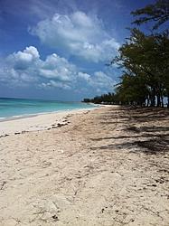 Caribbean Scenery and Fun!-img_2783.jpg