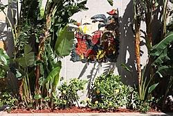 Caribbean Scenery and Fun!-pi14.jpg