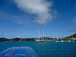 Caribbean Scenery and Fun!-ant2.jpg