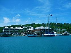 Caribbean Scenery and Fun!-ant3.jpg