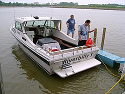 Pictures from the dock-riverbill.jpg