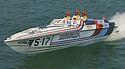 Where are the Seahawks?-seahawk-17.jpg