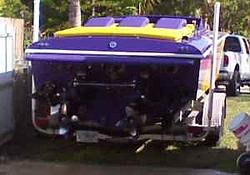 Jersey Boys listen up!!!!-purple-orange-sutphen-3.jpg