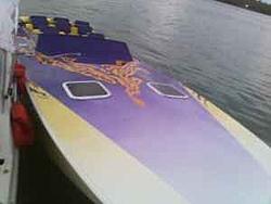 Jersey Boys listen up!!!!-purple-orange-sutphen-2.jpg