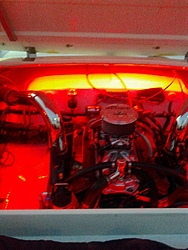 Engine compartment pics  anybody?-img_1313.jpg