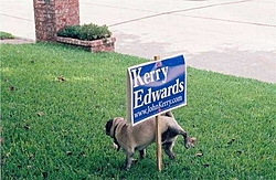 All you American Citizens Have The Power To...-good-dog.jpg