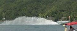 Big roost-waterfoulroostre.bmp