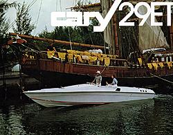 70's Cary/Cobra brouchure-file0148.jpg