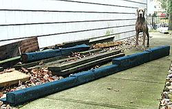Twin Step bunks....-pc110015.jpg