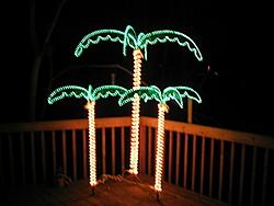 O Christmas Tree-img_0057.jpg
