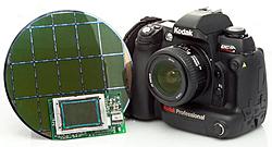 Which camera to buy?-slrn_sensor_wafer.jpg