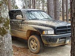 OT: Anyone go mudding with there trucks?-p1010025.jpg