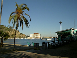 Catalina Island today, it was 78 degrees!-4.jpg