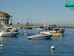 Catalina Island today, it was 78 degrees!-7.jpg