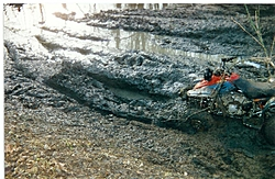 OT: Anyone go mudding with there trucks?-scan0013-large-.jpg