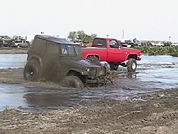 OT: Anyone go mudding with there trucks?-cajonboy.jpg