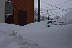 I know this isnt the classifieds, but.........-snow-04-012-large-.jpg