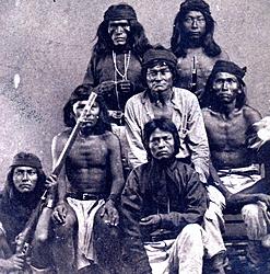 Apache People Suck!!!!!!-detail.jpg