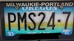 License plate of the year-pms24-71.jpg