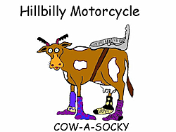 Boats and bikes, who has 'em?-cow-socky.jpg