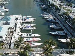Information On Sarasota-paint-057.jpg