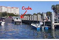 Information On Sarasota-cuda.jpg