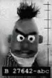 Another unsolved crime........you may have heard of this guy.-elmo_busted.jpg