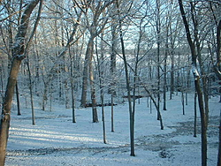 What happened to Spring in the Midwest-winter-shot.jpg