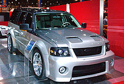 Ford Shelby 2007-gal_shelby1.jpg