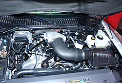 Ford Shelby 2007-gal_shelby5.jpg