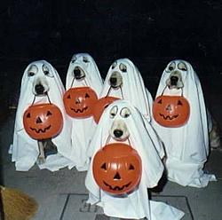 Happy Halloween!!!-hallow%7E1.jpg