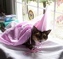 Happy Halloween!!!-halloween2002.jpg