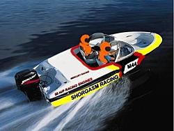 Shangied Again!!!!!!!-bayliner-racing-2.jpg