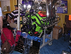 miami pics 2nd try-tmp1200-1400.jpg