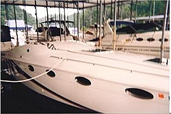 How Many People Are Multiple Boat Owners-small-pic-stinger.jpg