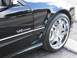 I saw the baddest cat today!-cl-front-fender-small-.jpg