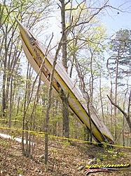 no speculation on why but bad wreck-treefountain.jpg