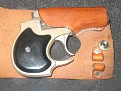 show your gun-guns-004.jpg