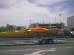 New cigarette in Sarasota?-gorgeous.bmp
