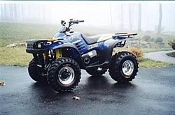 ATV'S  What should I buy?-toys.jpg