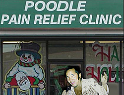 A Happy Birthday to our good POODLE buddy Jeffrey!-poodle-clinic.jpg