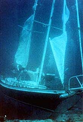 What a GREAT looking sailboat-arch3.jpeg