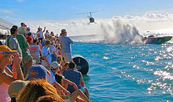 Key West Race Fans Unite-1p1020659.jpg