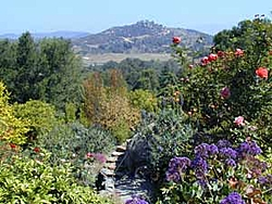 Hidden Valley Artist (and Boaters) Retreat-viewpath.jpg