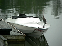 Boat Aerodynamics Problem?-p1010798small.jpg