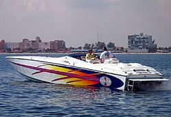 Key West 2005 Who's going?-tiger3b.jpg