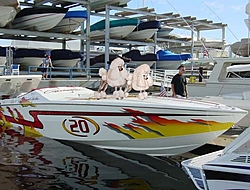 Polar Bear Ski Race to Catalina and back: What happened last weekend?-ron-poodle.jpg