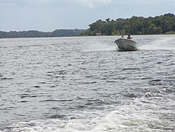 "St. John's River ""Jungle Run"" Nov. 4th-6th-p8280061-medium-.jpg"